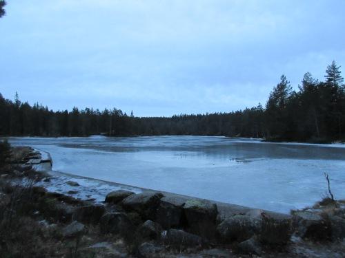 Landfalltjern en kald dag i januar..