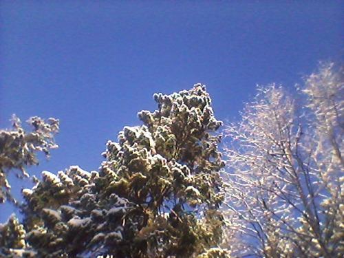 """På """"toppen"""" av slalombakken på Vikersund - med utsikt rett til himmelen.."""